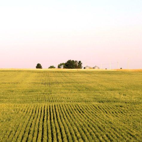 Dean-Creek-Farm