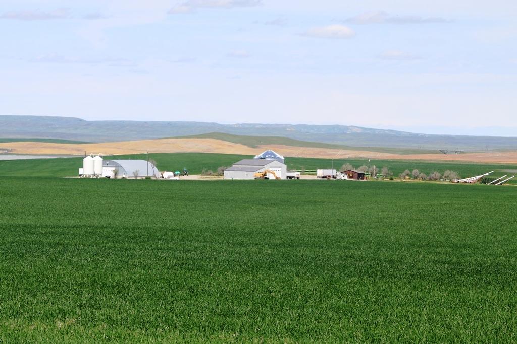 Montana Farm For Sale Toluca Farm Hardin Mt